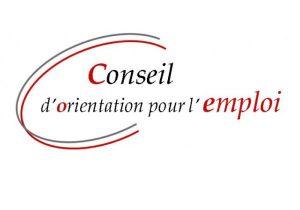 logo-conseil-dorientation-pour-lemploi-600x420